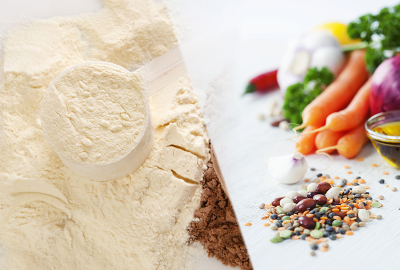 A Comparison Between Plant and Whey Protein Supplements
